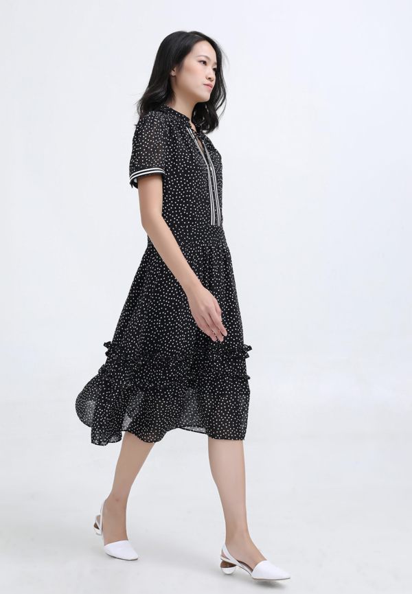 Polka Dots Fit and Flare Chiffon Dress